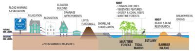 Coastline Features