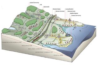 SCROG Map